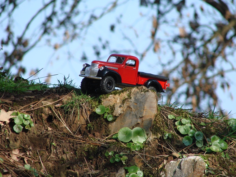 [Losi Micro Crawler] Chevrolet Pick-up 1946 1/19  076