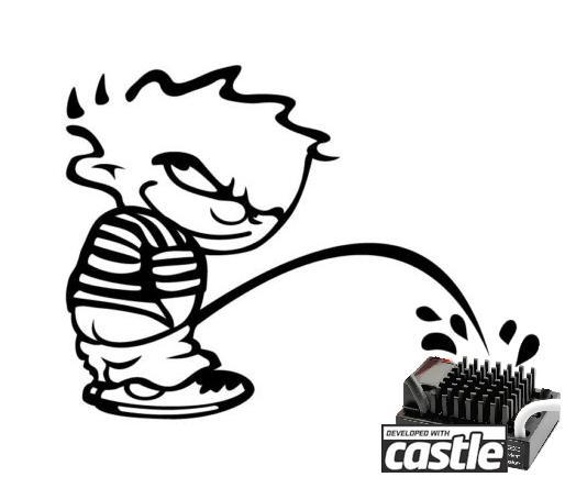 Choix du vario waterplouf pour moteur Brushed. - Page 2 Castle_grand