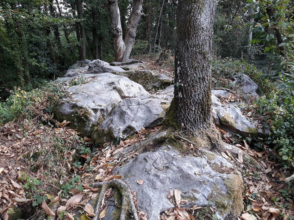 [49 - Maine et Loire] Spot du Dolmen de la Bajouliere 07